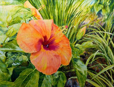 "Ross Barbera, ""Orange Hibiscus,"" Mounted Watercolor on Canvas, 32"" x 42"", 2016"