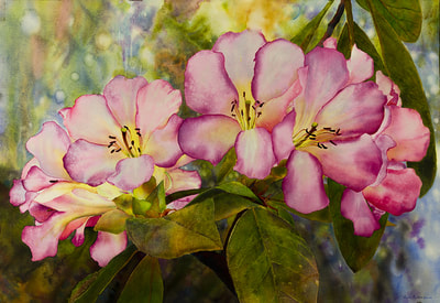 "Ross Barbera, ""Red Rhododendrons,"" Mounted Watercolor on Canvas, 32"" x 42"", 2014"