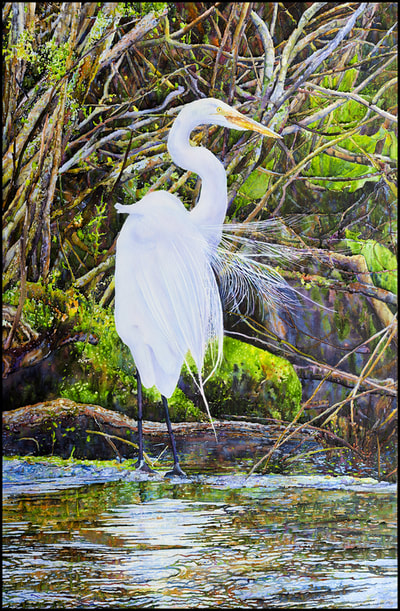 "​""Egret: Early Summer, Avalon Preserve, Stony Brook, NY"" by Ross Barbera  Mounted Watercolor on Canvas, 43"" x 28"", 2017"