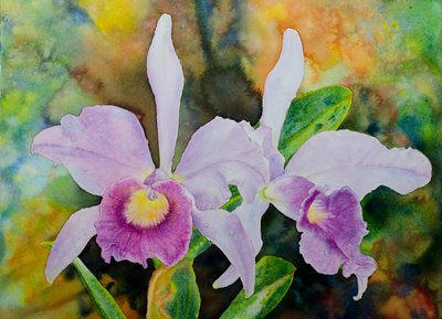 "Ross Barbera, ""Purple Orchids,"" watercolor on paper, 22"" x 30"", 2017"
