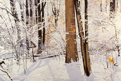 """Winter of 94: Snow and Ice,"" by Ross Barbera, Acrylic on Canvas, 48"" x 78"", ©1994"